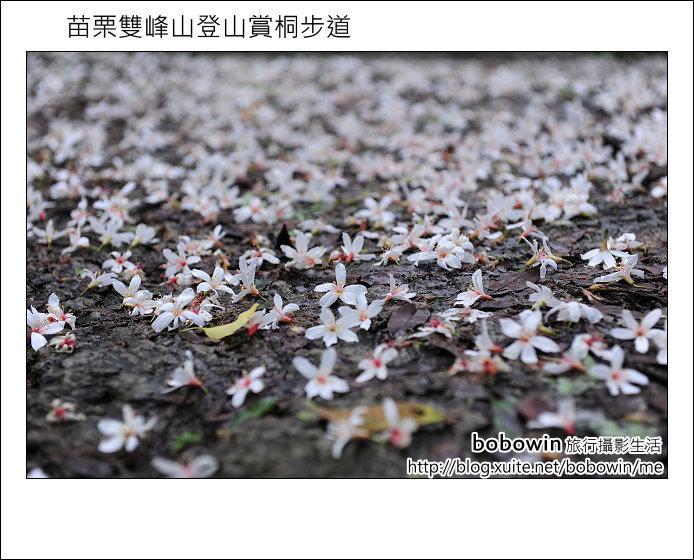 2012.04.29 苗栗雙峰山登山步道:DSC_1864.JPG