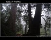 [ 北橫 ] 桃園復興鄉拉拉山森林遊樂區:DSCF7795.JPG