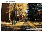 [ 日本東京自由行 ] Day4 part3 東京大學:DSC_0479.JPG