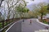 南投鳳凰谷鳥園生態園區:DSC_7959.JPG