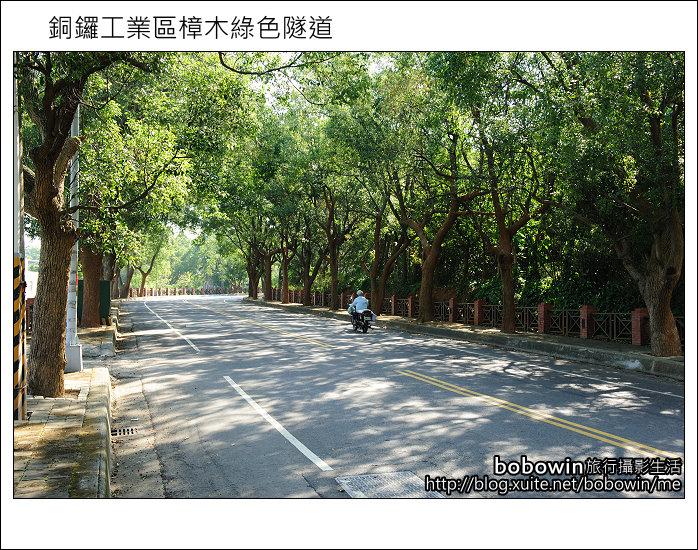 2011.10.23 銅鑼工業區樟木綠色隧道:DSC_9142.JPG