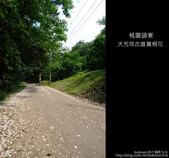 2009.04.30 大艽芎古道賞桐花:DSCF1998.JPG
