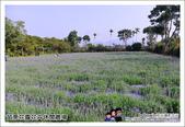 苗栗花露花卉農場:DSC_7251.JPG