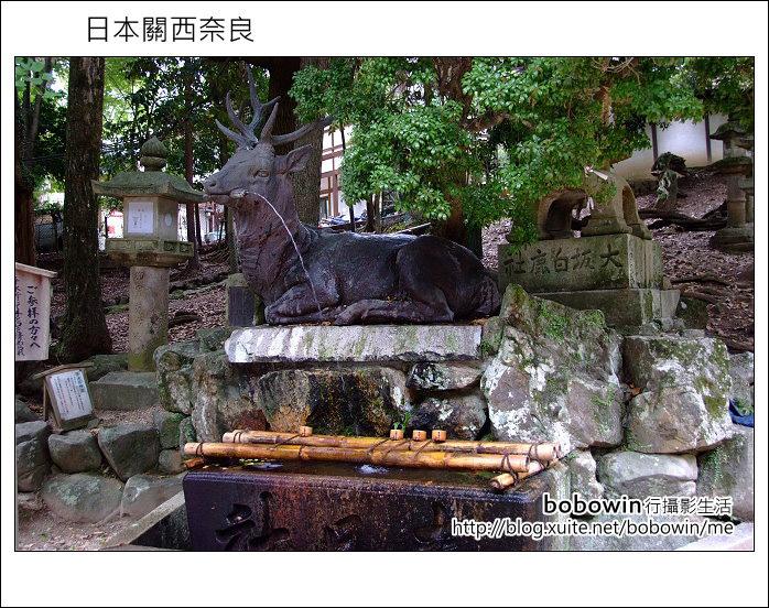 日本關西京都之旅Day5 part1 東福寺 奈良公園 春日大社:DSCF9609.JPG