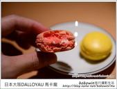 日本心齋橋DALLOYAU 馬卡龍:DSC_6991.JPG