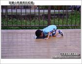 蘭小熊書房彩虹屋:DSC_3645.JPG