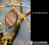 [ 台中 ] 新社薰衣草森林--薰衣草節:DSCF6623.JPG