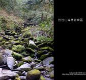 [ 北橫 ] 桃園復興鄉拉拉山森林遊樂區:DSCF7923.JPG