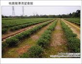 2012.03.30 桃園龍潭渴望會館:DSC_8392.JPG