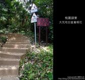 2009.04.30 大艽芎古道賞桐花:DSCF2002.JPG