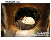 日本東京SKYTREE:DSC06914.JPG