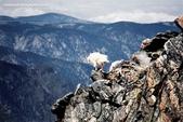 山羊相片:ATT00085.jpg