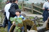 竹子湖:DSC_0148_調整大小_調整大小.JPG