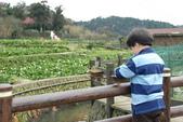 竹子湖:DSC_0132_調整大小_調整大小.JPG