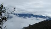 雪見森林遊憩區:IMG_9005.JPG