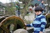 竹子湖:DSC_0136_調整大小_調整大小.JPG