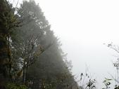 太平山&見晴古道:調整大小DSC_0853.JPG
