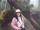 太平山翠峰湖:調整大小101_8733.JPG