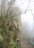 太平山&見晴古道:調整大小旋轉DSC_0901.JPG