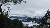 雪見森林遊憩區:IMG_8991.JPG