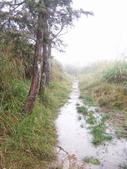 太平山翠峰湖山毛櫸步道:調整大小100_0772.JPG