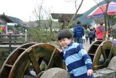 竹子湖:DSC_0140_調整大小_調整大小.JPG