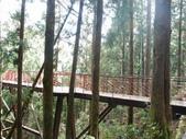 太平山&見晴古道:調整大小DSC_0753.JPG