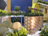 2011台北國際蘭展:IMG_6107_調整大小.JPG