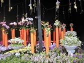 2011台北國際蘭展:IMG_6074_調整大小.JPG