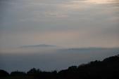 竹子湖:DSC_0176_調整大小_調整大小.JPG
