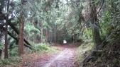 雪見森林遊憩區:IMG_8974.JPG