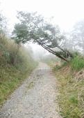 太平山翠峰湖:調整大小旋轉DSC_0438.JPG