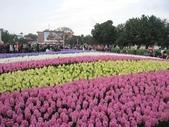 花博--春之花頌:IMG_4761.JPG