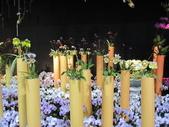 2011台北國際蘭展:IMG_6080_調整大小.JPG