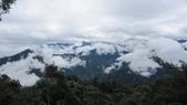 雪見森林遊憩區:IMG_8929.JPG