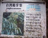 太平山翠峰湖:調整大小101_8741.JPG
