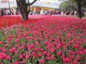 花博--春之花頌:IMG_4820.JPG