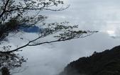 雪見森林遊憩區:IMG_8996.JPG