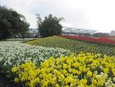 花博--春之花頌:IMG_4716.JPG