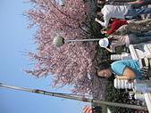2011天元宮櫻花:IMG_7109.JPG