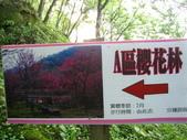 桃源仙谷:IMG_7245_調整大小