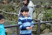 竹子湖:DSC_0147_調整大小_調整大小.JPG