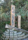 太平山&見晴古道:調整大小旋轉DSC_0683.JPG
