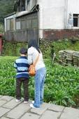 竹子湖:DSC_0123_調整大小_調整大小.JPG