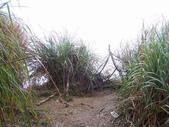 太平山翠峰湖山毛櫸步道:調整大小100_0805.JPG