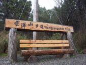 太平山翠峰湖山毛櫸步道:調整大小100_0689.JPG