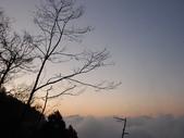 太平山&見晴古道:調整大小DSC_0933.JPG