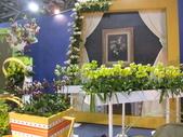 2011台北國際蘭展:IMG_6108_調整大小.JPG