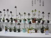 2011台北國際蘭展:IMG_6342_調整大小.JPG