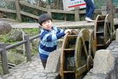 竹子湖:DSC_0143_調整大小_調整大小.JPG